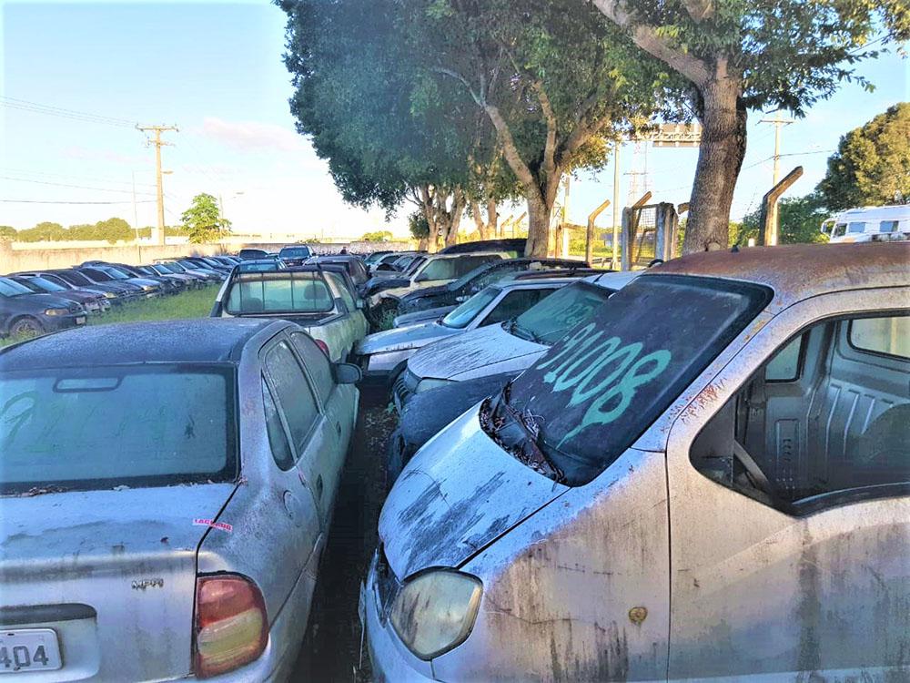 PRF promove leilão de aproximadamente 500 veículos apreendidos na Bahia. Foto: Divulgação/PRF-BA