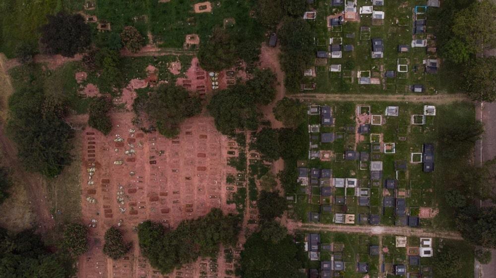 Covas abertas no cemitério Vila Nova Cachoeirinha, que atende a Brasilândia, bairro onde negros são metade da população e tem o maior número de mortes por Covid-19 (Imagem: Divulgação)