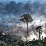 Para Dom Roque Paloschi as políticas indigenistas do governo Bolsonaro, como flexibilização do garimpo e grilagem de terras, contribuem para o avanço do coronavírus nas terras indígenas (Imagem: Marcelo Salazar/ISA)