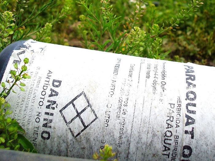 O paraquate é um herbicida altamente perigoso (Foto: Alam Ramírez Zelaya)