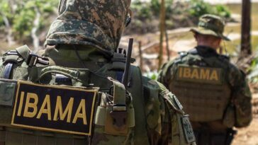 (Foto: Divulgação/Ibama)