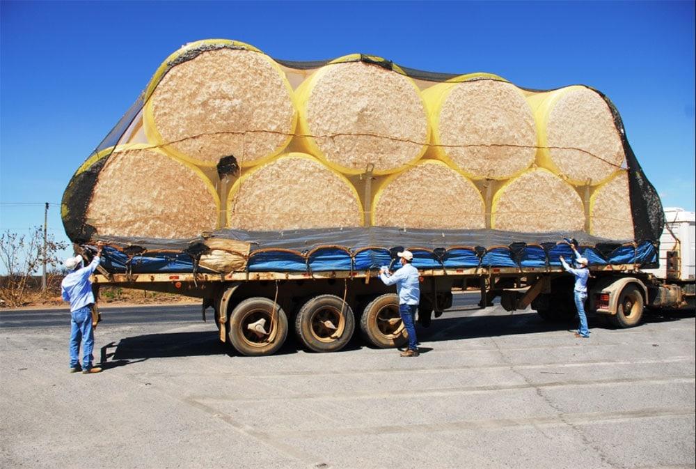 Programa fitossanitário Abapa - orientação transporte adequado do algodão (Foto: Abapa)